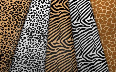 Collection léopard